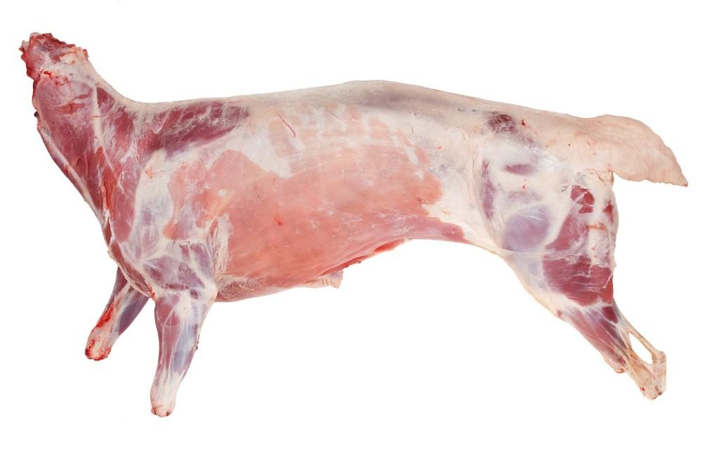 Lamb Carcass ( Whole )